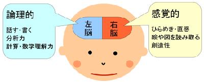 利き脳で片付けの仕方が変わる!?利き脳チェックの方法をご紹介の画像1